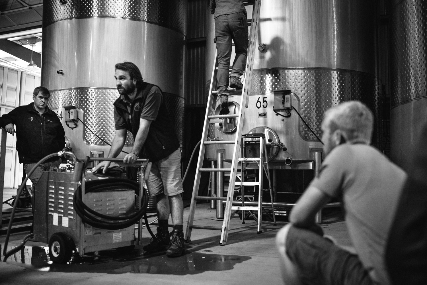working in the winery black and white